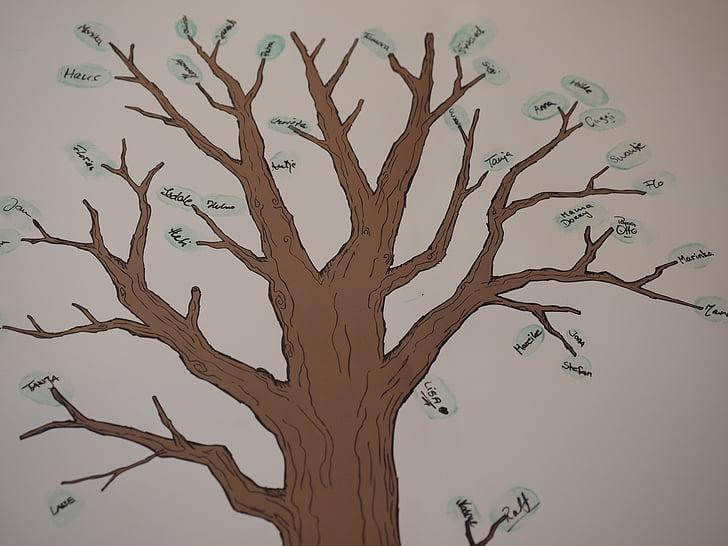 ต้นไม้, ต้นไม้ครอบครัว, สาขา, ชนเผ่า, บรรพบุรุษ, เพื่อน, เพื่อนต้นไม้