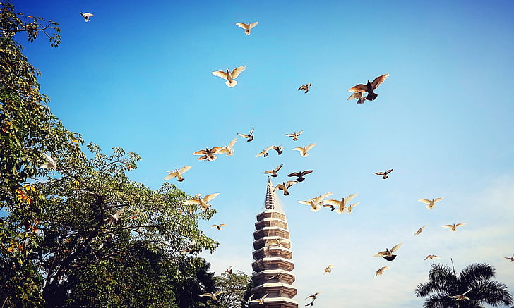 Xiamen, Colom, Baita, el paisatge