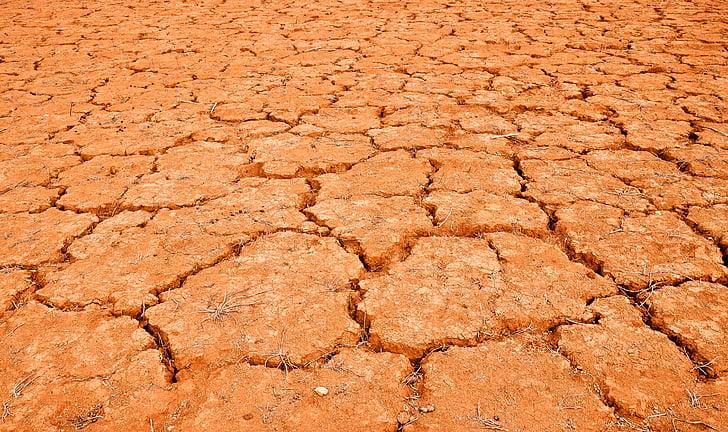desert de, fang, sec, s'asseca, sense vida, esquerdat, sequera