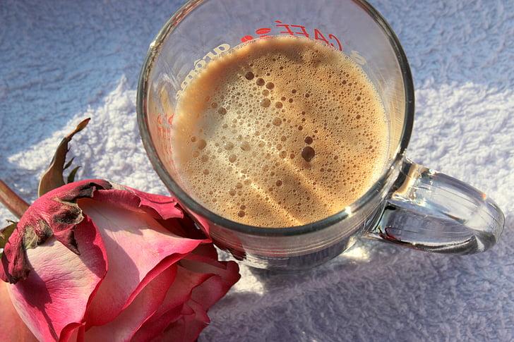filiżanka kawy, Kawa, Dzień dobry, napój, Kofeina, aromatyczne, Róża