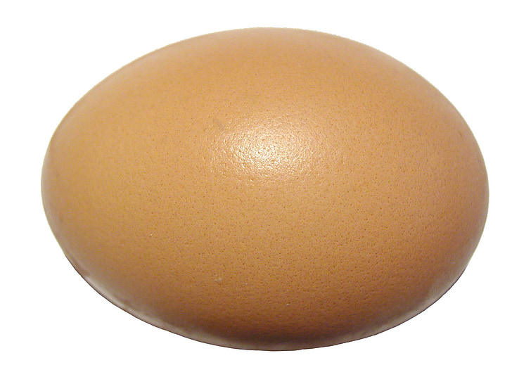 ou, eggshell, proteïna, closca, ovoide, aliments, ingredient