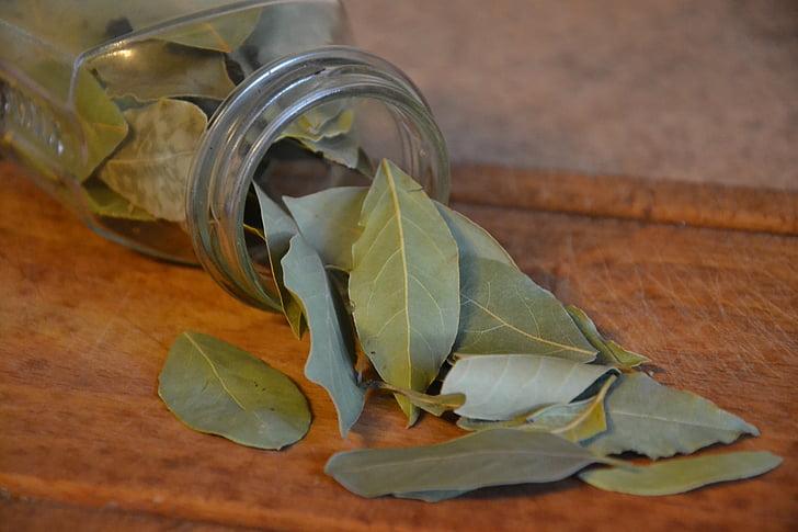 laurų, lauro lapų, prieskonių, virtuvė, prieskoniai, augalų, maisto