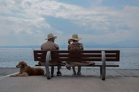 bænk, Boardwalk, skyer, hund, Ocean, folk, havet