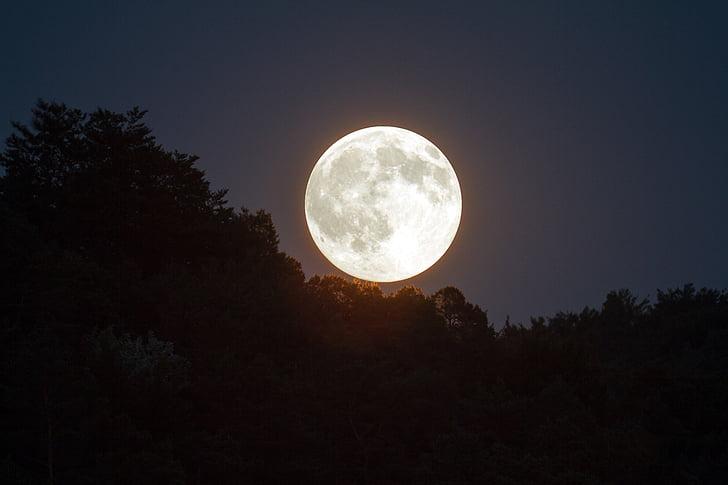 저녁 하늘, 달빛, 문, 분위기, 밤 하늘, abendstimmung, 슈퍼 문