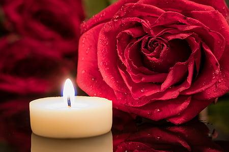stearinlys, røde rose, Candlelight, steg, dråbe vand, nostalgisk, lys