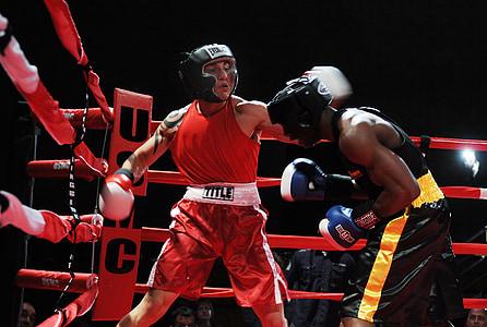 samba-canção, machos, boxe, desporto, aptidão, golpe oblíquo, anel