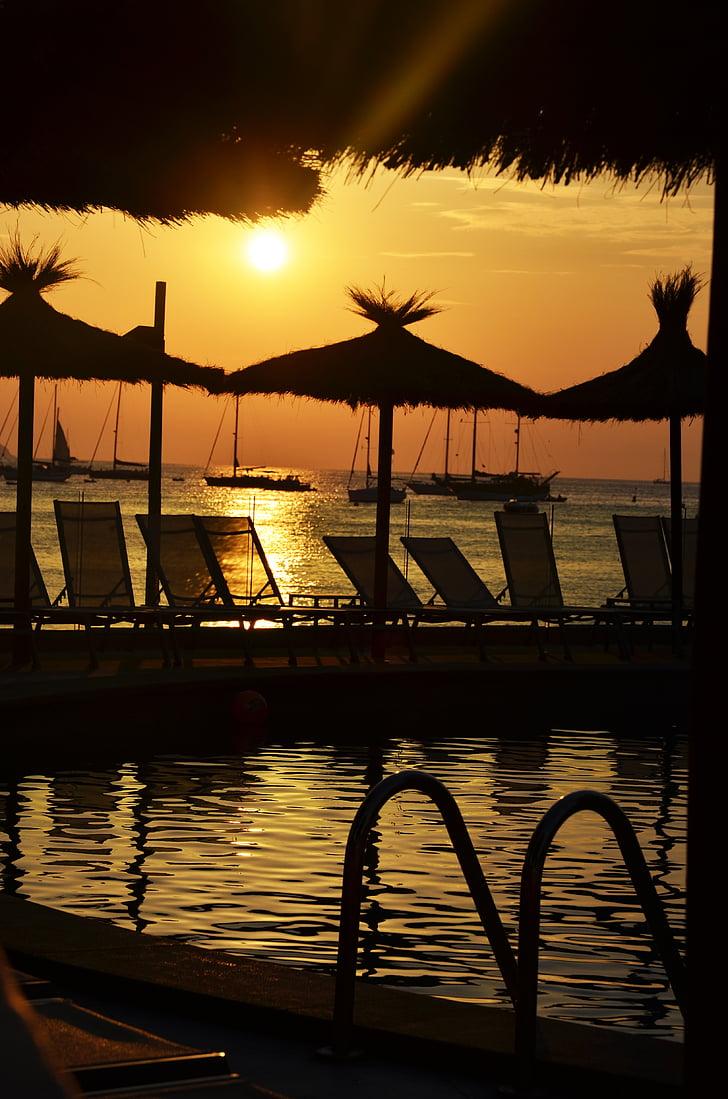 l'estiu, sol, calor, fons d'estiu, llum del sol, natura, posta de sol
