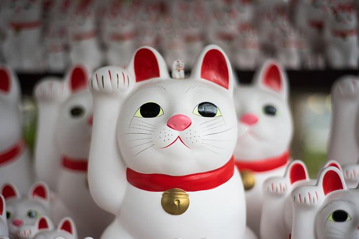 kissa, hahmo, Japani, näyttö, kokoelmat