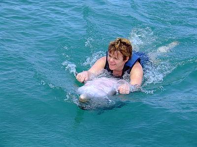 dolfijnen, zwemmen, zee, water, Marine, leven, dier