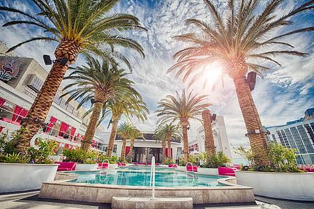 tatil, otel, Las vegas, lüks, avuç içi, Resort, Yüzme Havuzu
