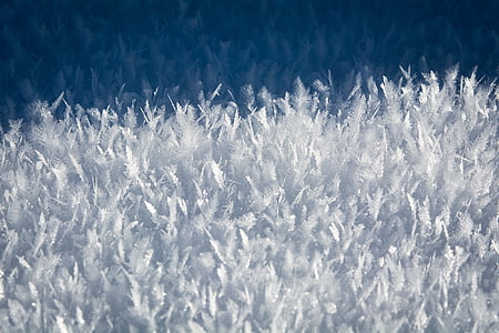 ice, eiskristalle, frozen, winter, crystals, iced, cold