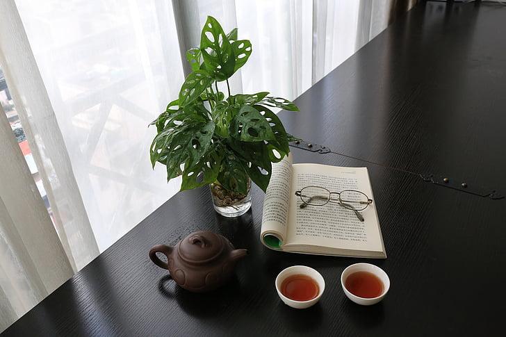 กาน้ำชา, สุขภาพ, แว่นตา, ชา, วัยชรา