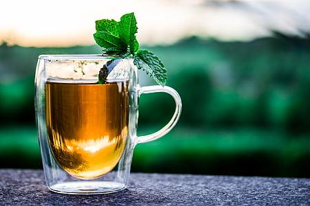 xícara de chá, xícara de chá, t, bebida, quente, chá de hortelã-pimenta, folhas de hortelã-pimenta