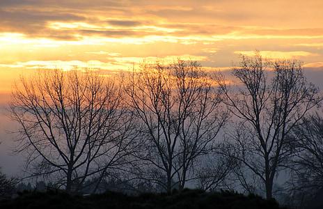 Alba, matí, morgenstimmung, cel, núvols, estat d'ànim, Alba