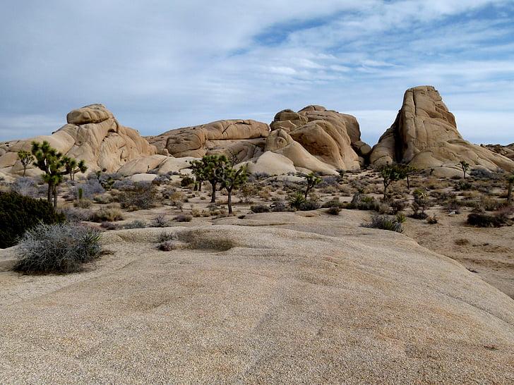 é.-u., Rock, Ouest USA, Parc national de Joshua tree, couleurs ocres, nature, paysage