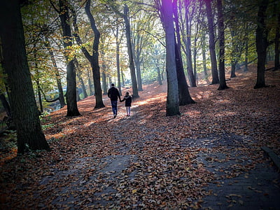 autumn, forest, trees, parent, father and daughter, happiness, nature