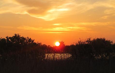 sunrise, lake, sun, morning, morgenstimmung, water, mood