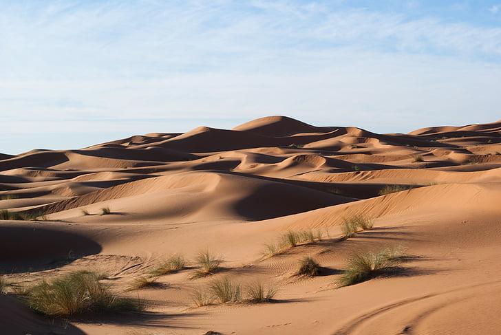 puščava, sipine, pesek, pesek sipin, narave, suho, krajine