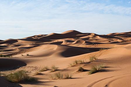desert de, dunes, sorra, dunes de sorra, natura, sec, paisatge