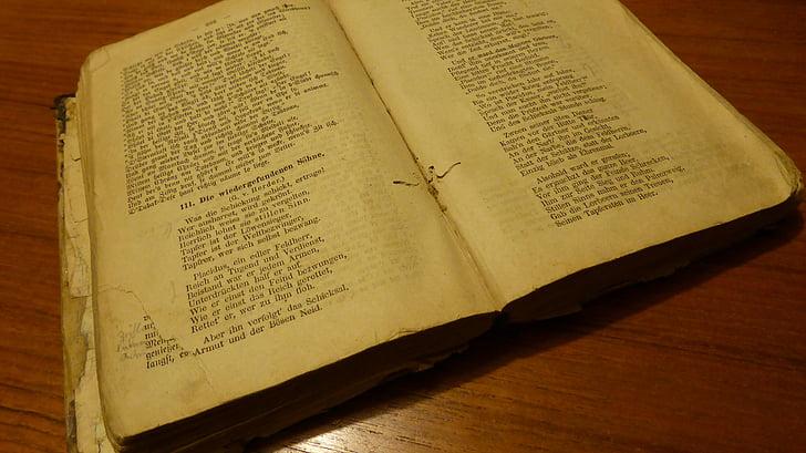 llibre antic, llibre, Bookworm, llibre de text, antiquari, literatura, llibres antics