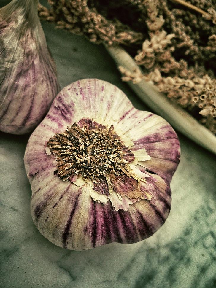 All, aromàtics, olor, Mediterrània, aliments, blanc, planta
