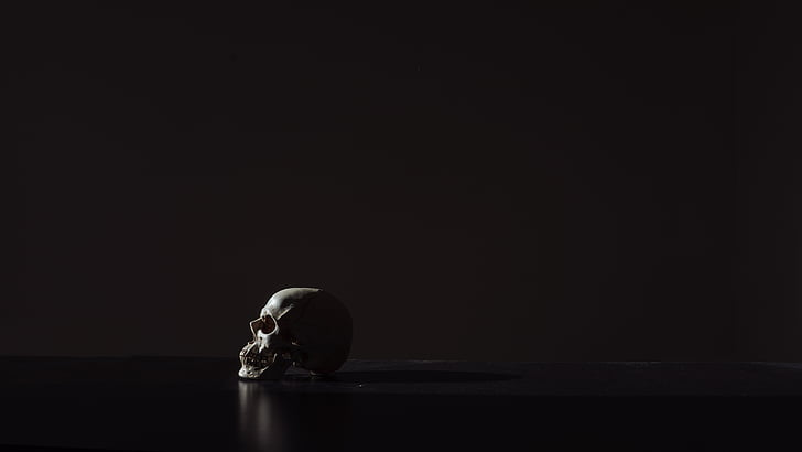 white, skull, black, surface, black background, reflection, studio shot
