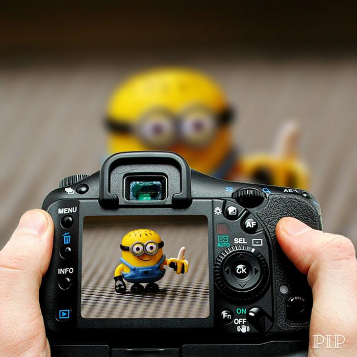 Minion, càmera, fotos, fotografia, divertit