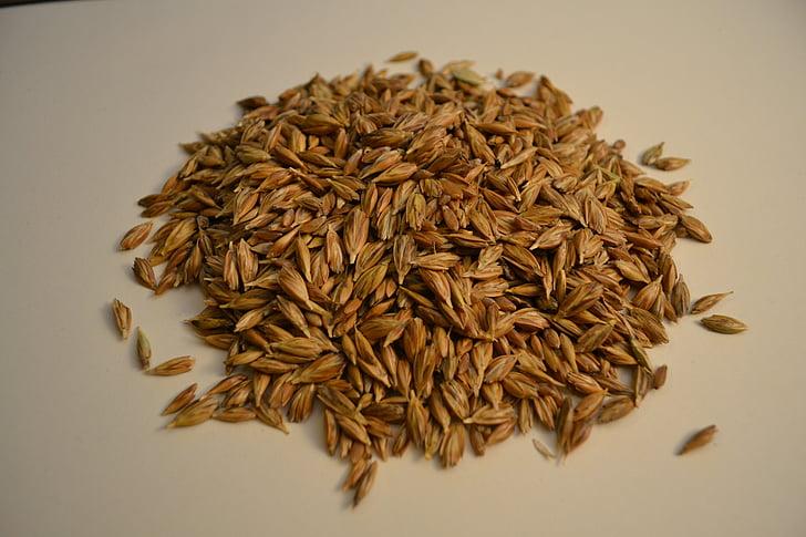 エマー, 小麦, 穀物, 有機