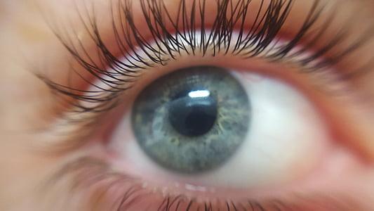 eye, eyelashes, eyeball, blue-eyed, blue eyes, focus point, skin