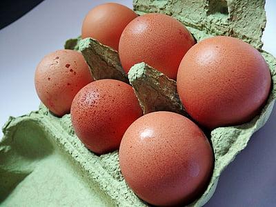 ou, ouera, ous de gallina, aliments, ouera, ous de color marró, embalatge de ous