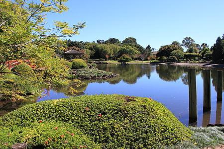 Toowoomba, Queensland, jardin japonais, Parc, tranquil, paysage, Japonais