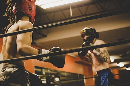 хора, мъже, бокс, спорт, играта, Фитнес, упражнение