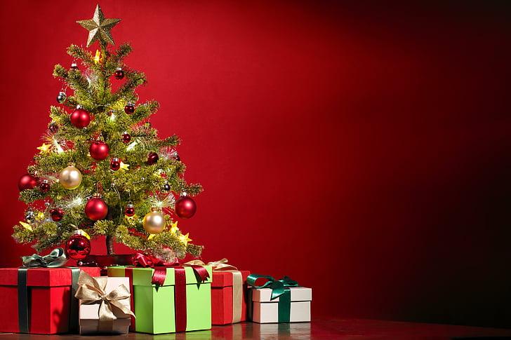Kalėdos, Kalėdų eglutė, papuošti, apdaila, dovana, dovanos, medis