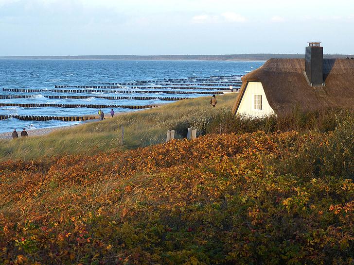 Ahrenshoop, Zingst, Mar Báltico, perspectivas, à noite na praia, Costa, humor