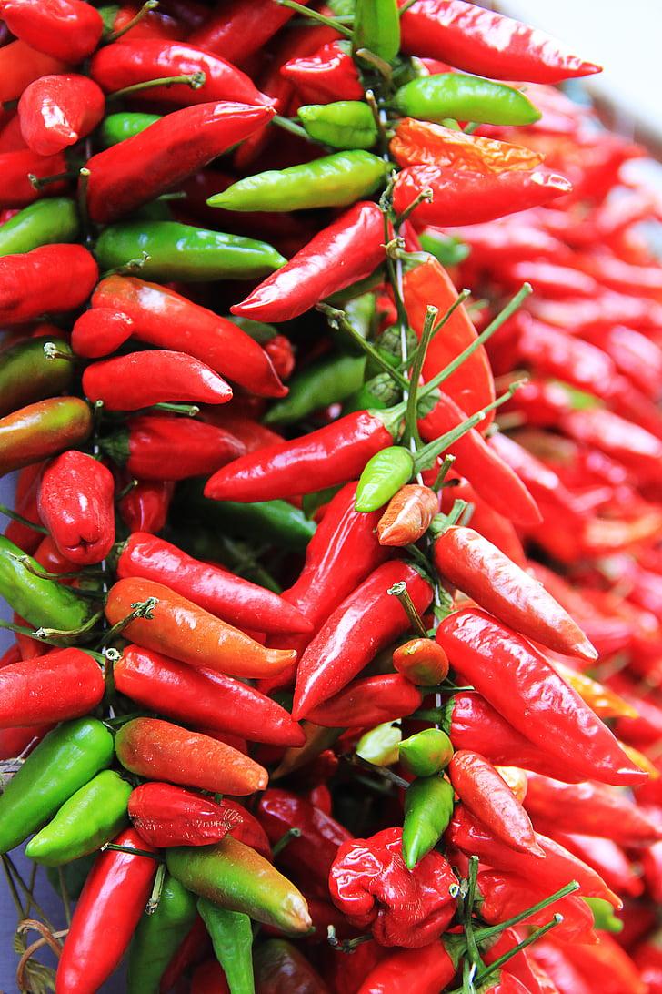 čili, oštar, Crveni, začin, mahuna, ljute papričice, hrana