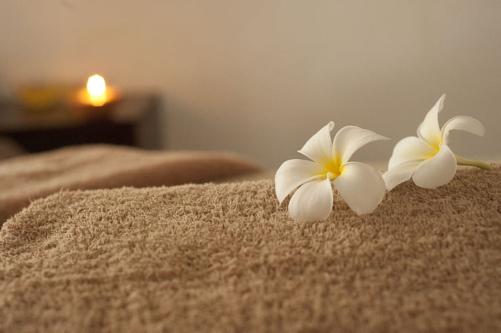 afslapning, Spa, massage, Frangipani, blomst, natur, spa-behandling