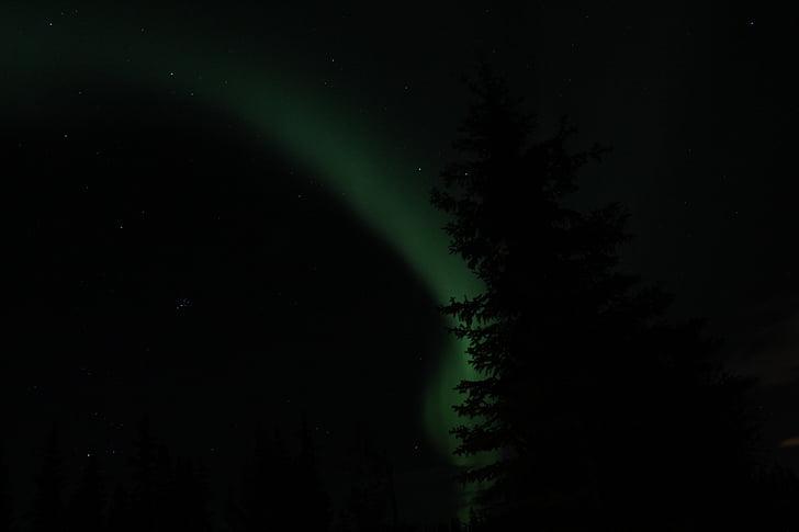Aurora, llums del nord, Alaska