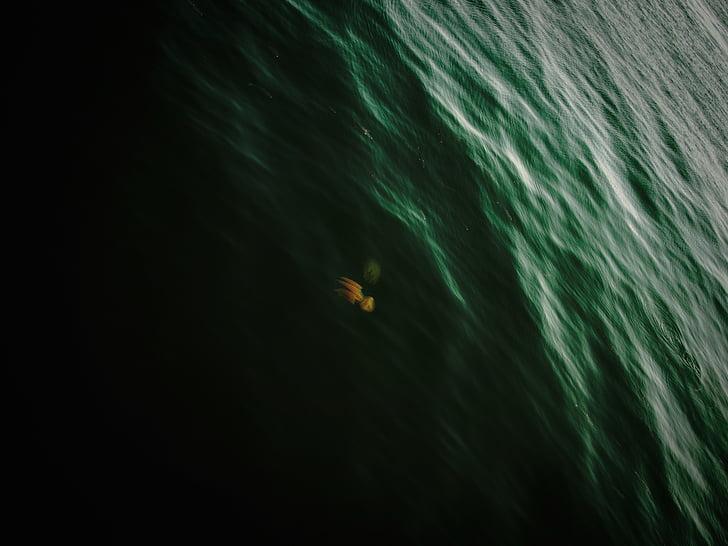 natura, paisatge, l'aigua, oceà, Mar, actual