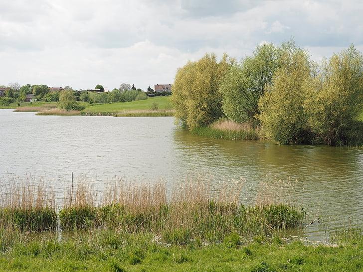 tó, Bank, táj, természet, idilli, légköri, nád