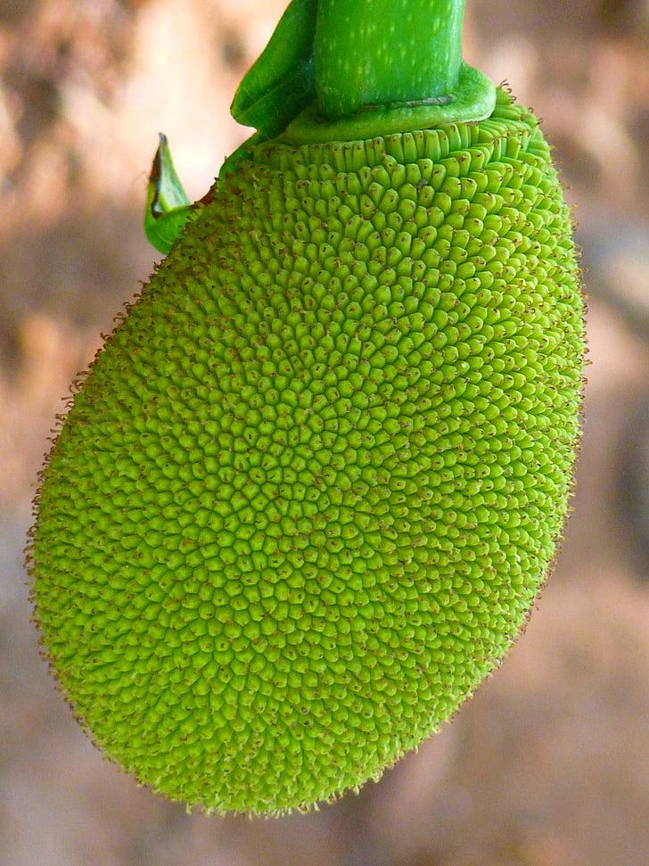 sota, fruita, verd, deliciós