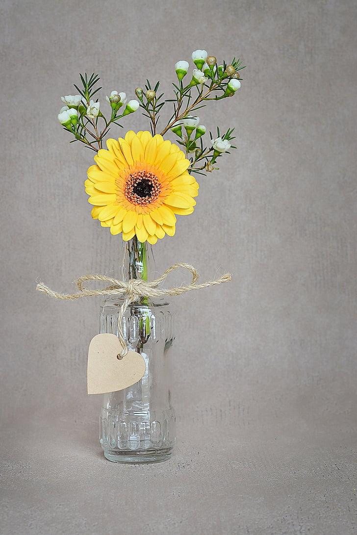 gėlė, Gerbera, geltona, žiedų, žydėti, geltona gėlė, Susiskleidžiančios trapios