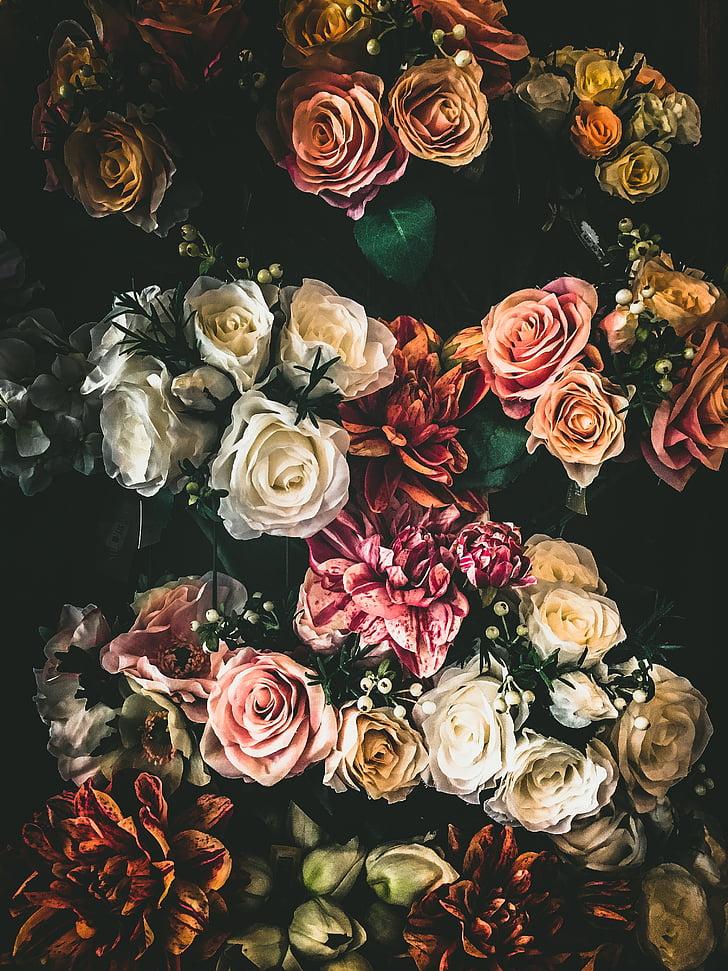 colorful, flower, nature, plant, bouquet, petals, rose - flower