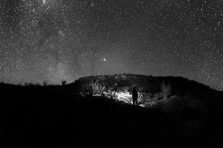 stele, noapte, Universul, cerul de noapte stele, astronomie, Star - spaţiu, Galaxy