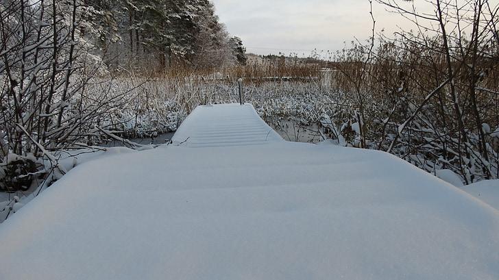 tuyết, wintry
