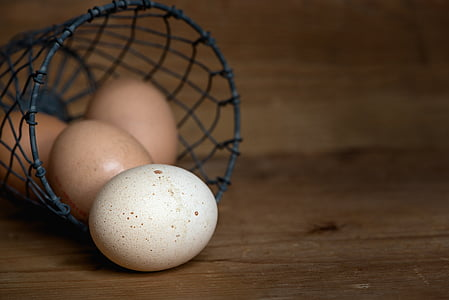 ou, ous de gallina, cistella, producte de pollastre, aliments, Nutrició, ous de color marró