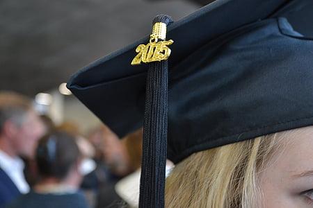 квадратна академична шапка, домашен любимец, шапка за завършване, дипломирането капачка, дипломирането, университет, студент