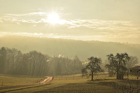 landscape, fog, morning sun, autumn, sunrise, trees, mood
