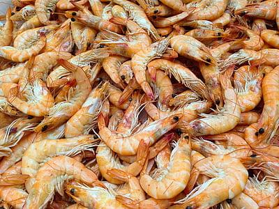 reker, krepsdyr, sjøen, sjømat, mat, friskhet, gourmet