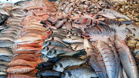 kala, turu, Sea, värske