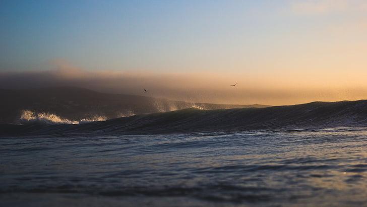 κύμα, σπάσιμο, κυματοθραύστη, σπρέι, αφρώδες υλικό, Ωκεανός, στη θάλασσα